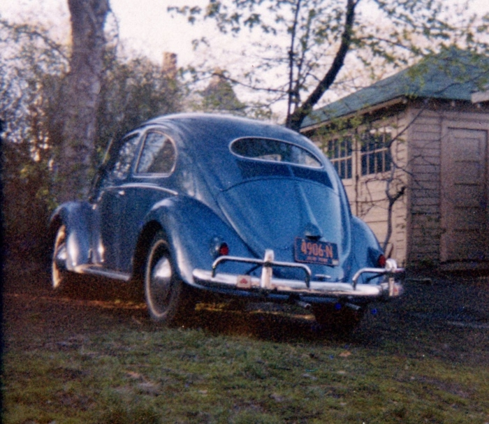 The '57 Beetle from the rear. Note the blue & gold NY plates. Both photos taken in our backyard on Staten Island.