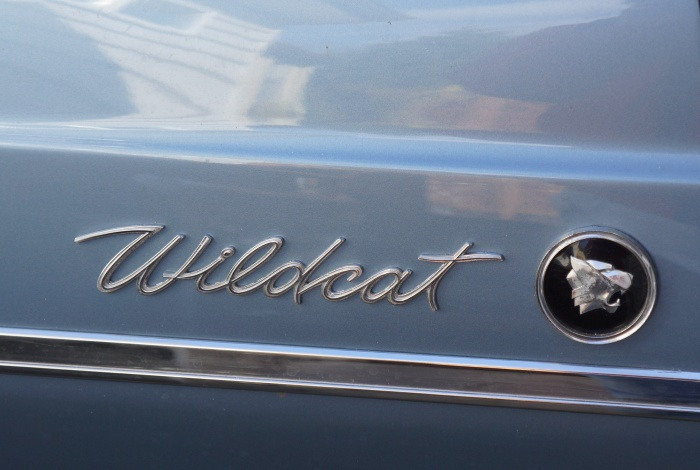 The Wildcat trim on the rear quater